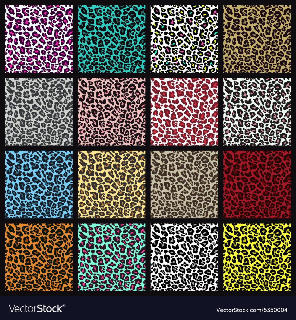 Set of leopard seamless patterns vector image