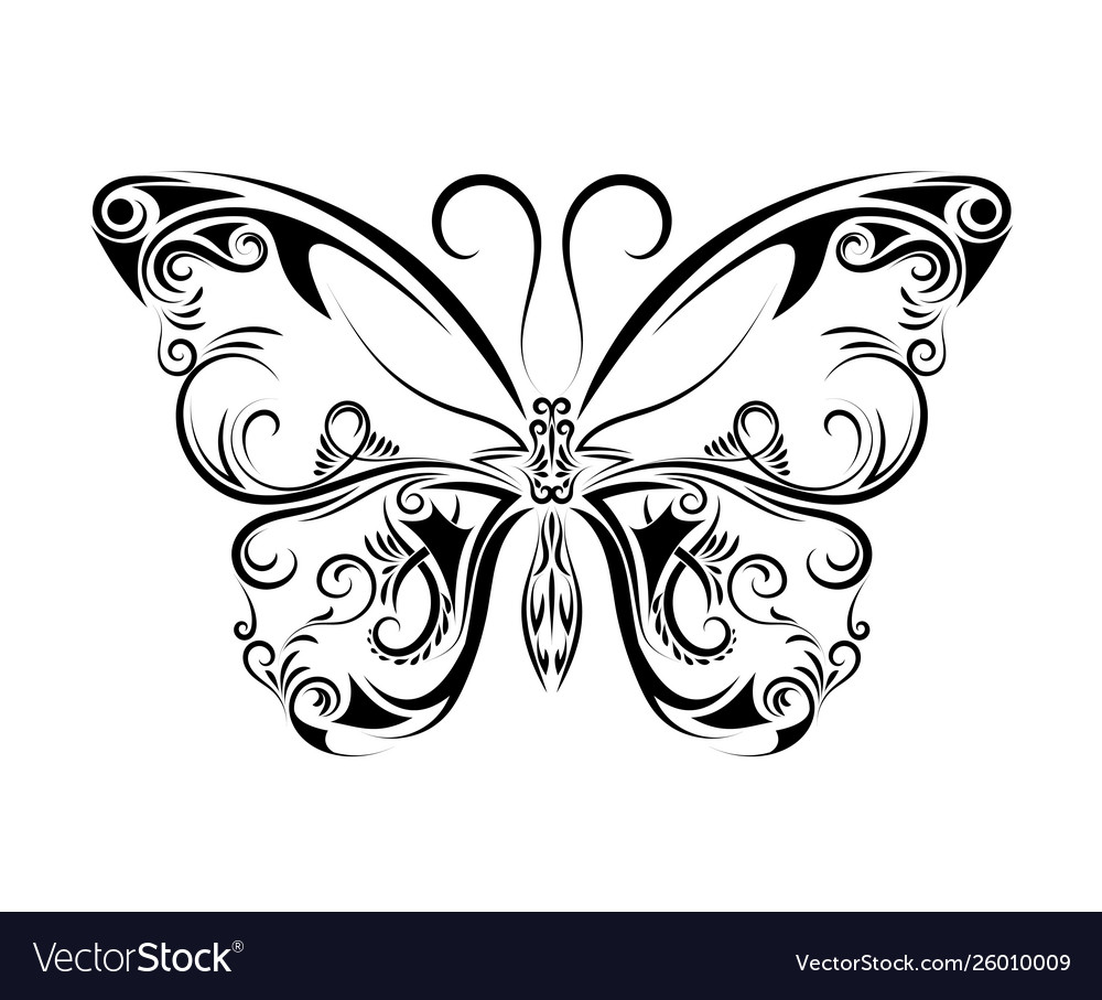 Beautiful black and white butterfly isolated on