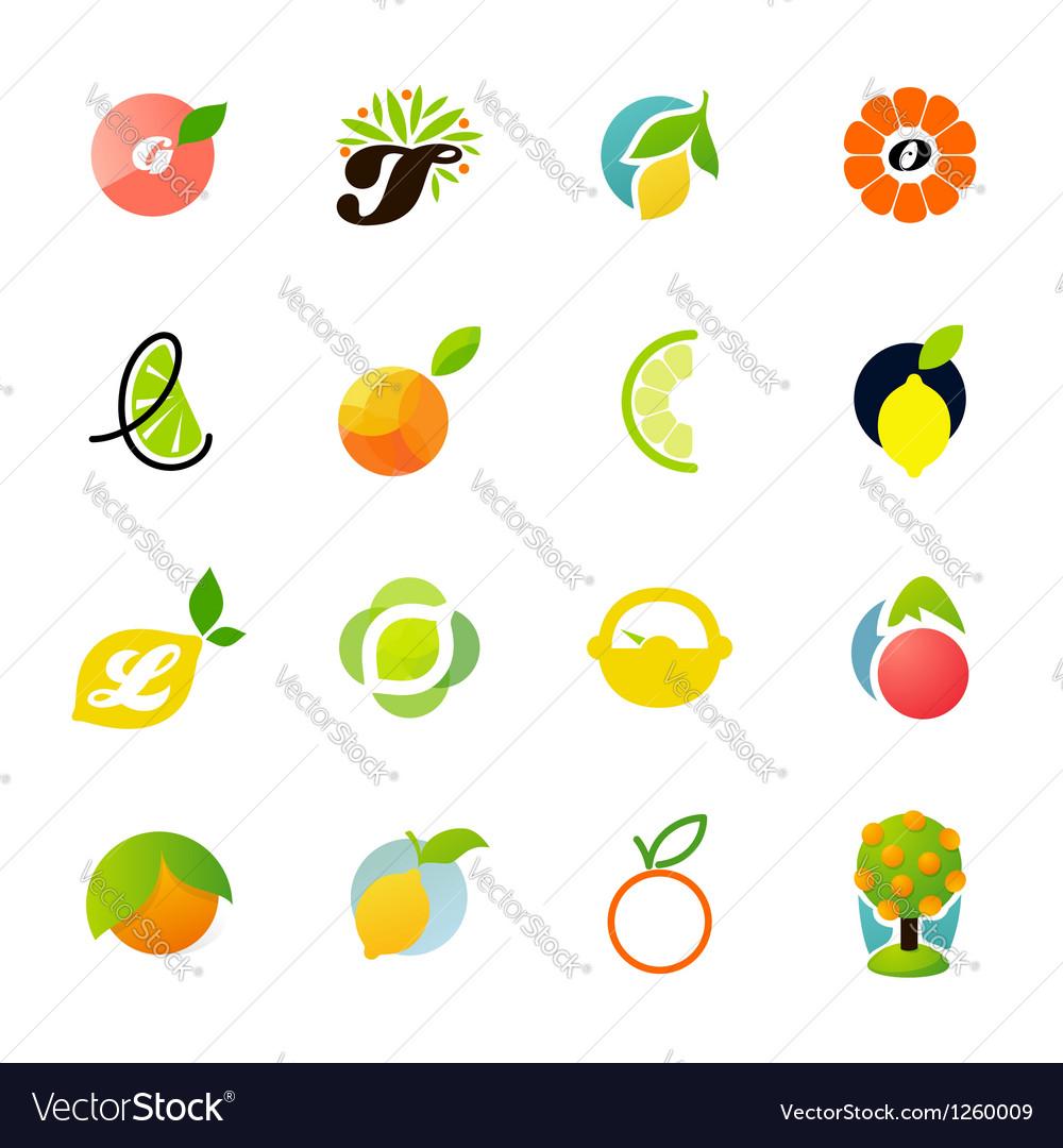 Citrus family - logo templates set vector image