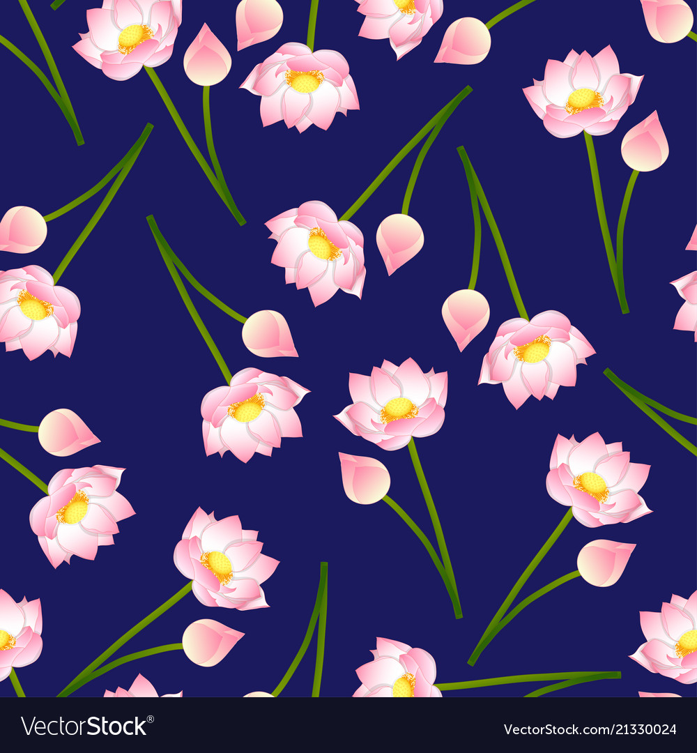 Pink Indian Lotus On Navy Blue Background Vector Image