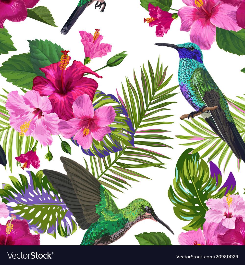 Tropical seamless pattern hummingbirds flowers vector image