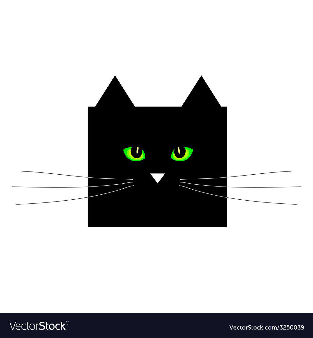 Sweet and cute black cat