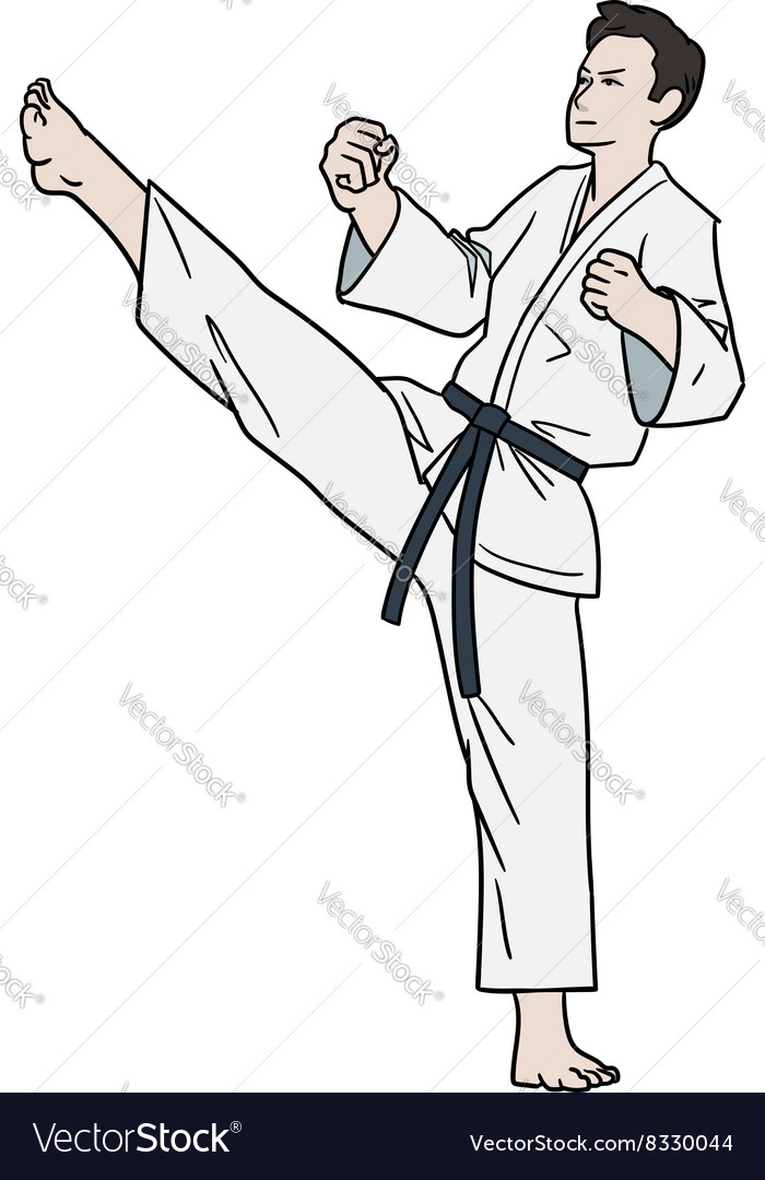 Karate fighter isolated