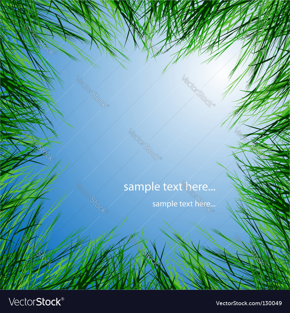 Green grass vector image