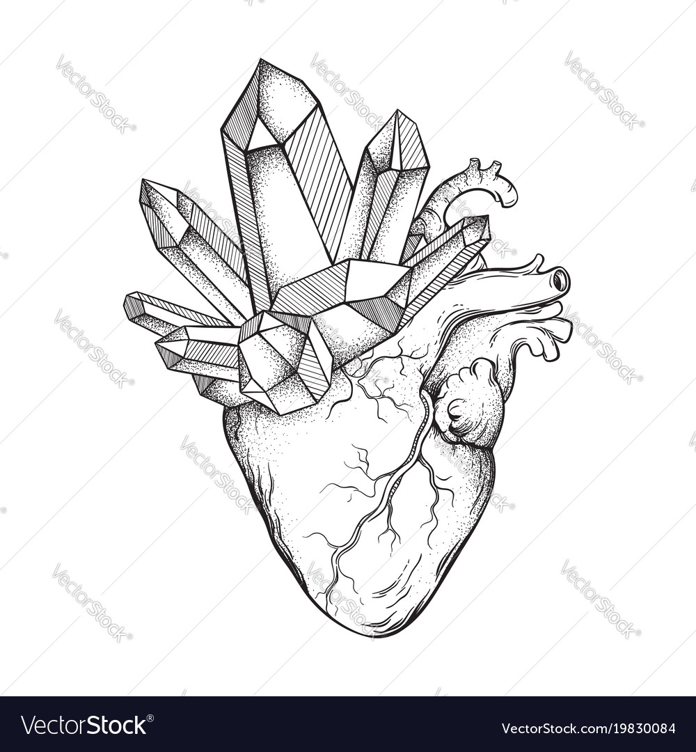 Crystals growing from human heart isolated