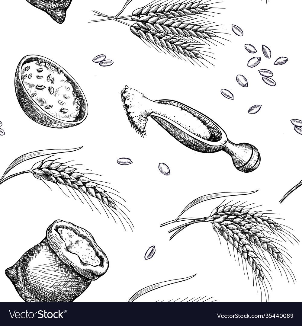 Wheat barley hand drawn seamless pattern