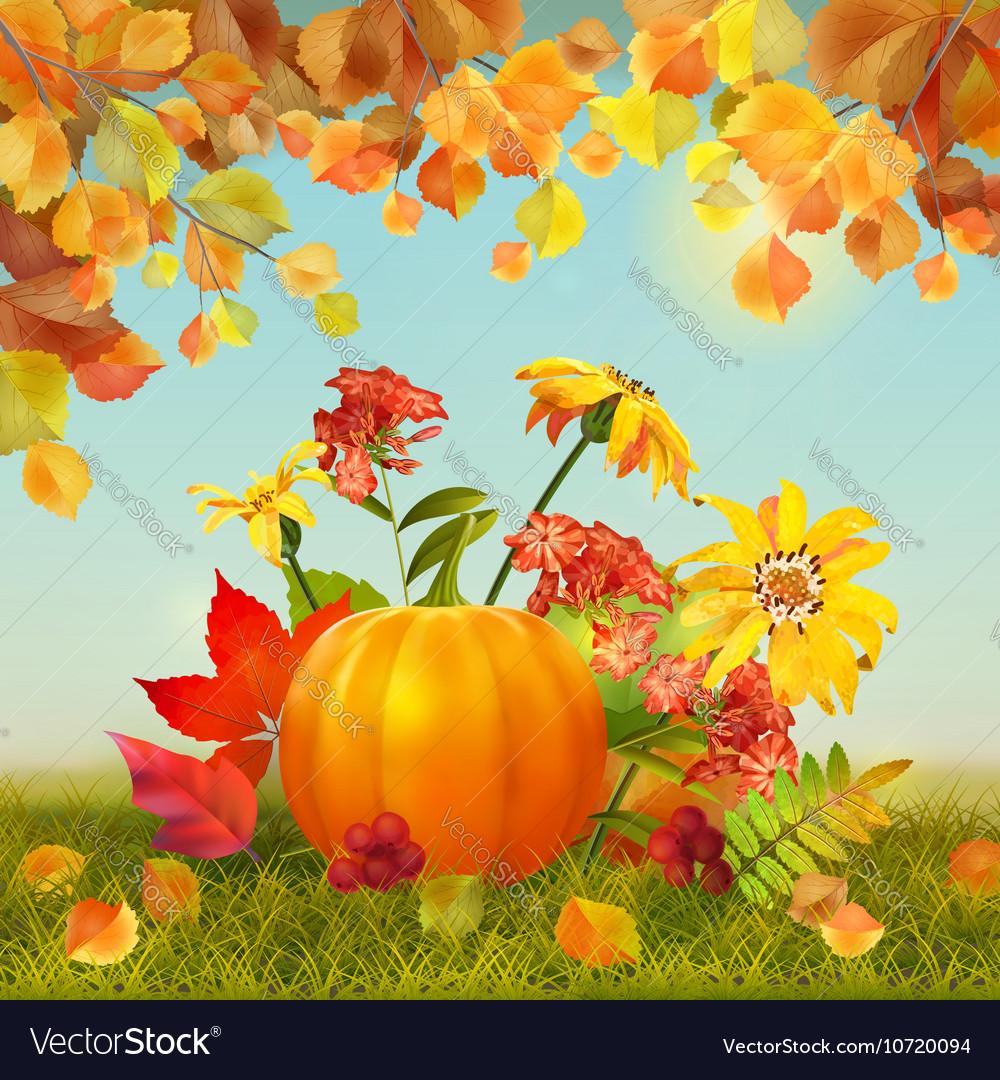 Autumn Thanksgiving Card vector image