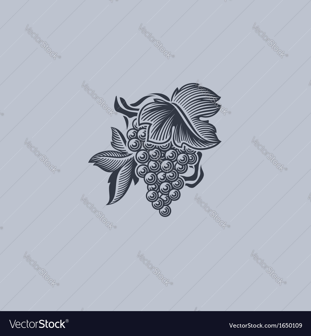 Grape with leaf - Element for design