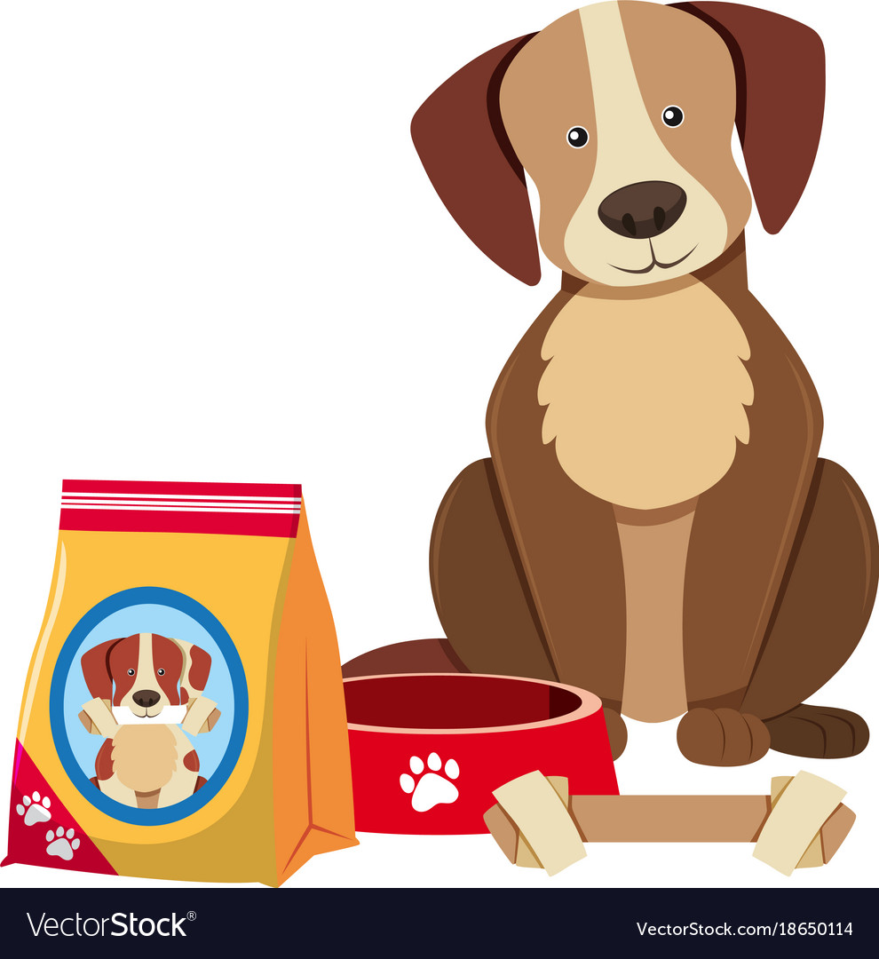 Cute dog and dog food