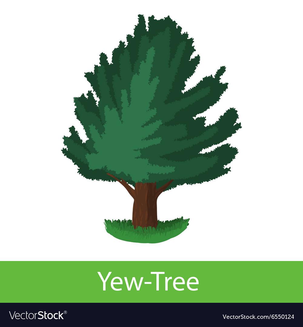 Yew-Tree cartoon icon