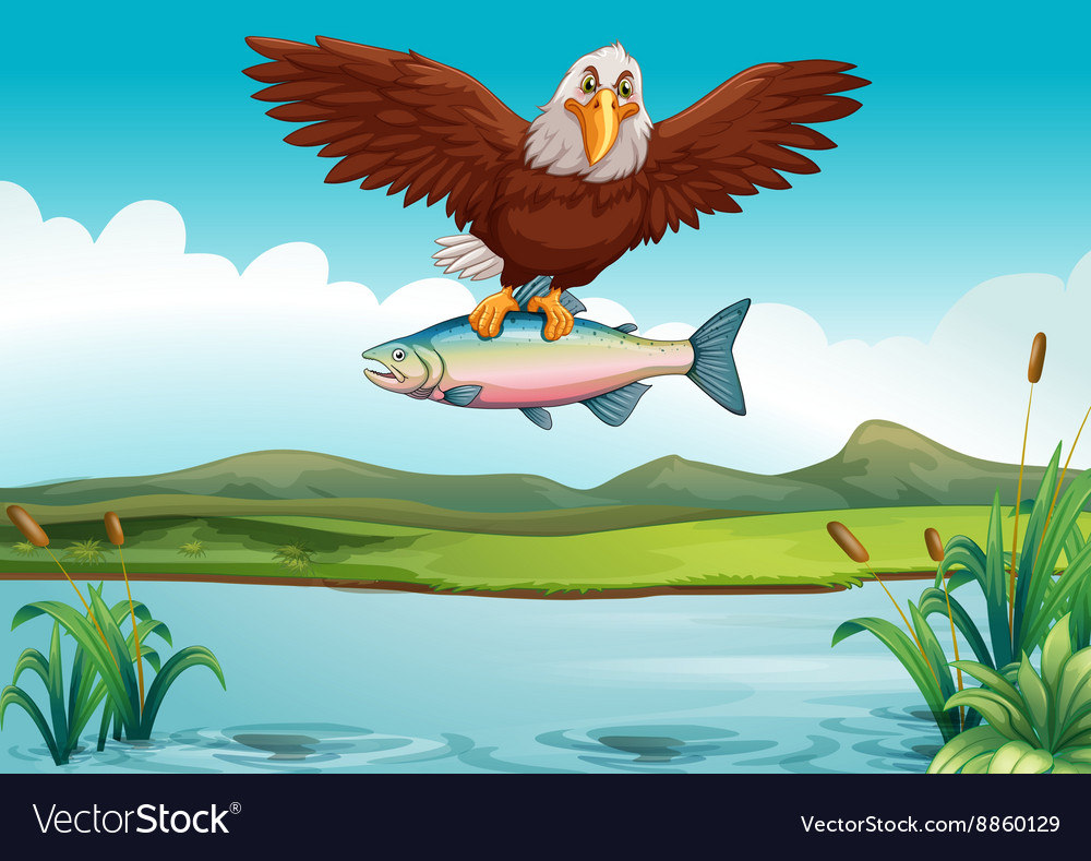 Eagle Catching Fish In The Lake Royalty Free Vector Image