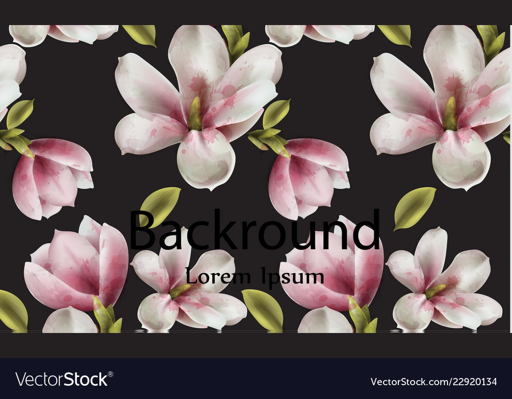 Magnolia background watercolor flowers