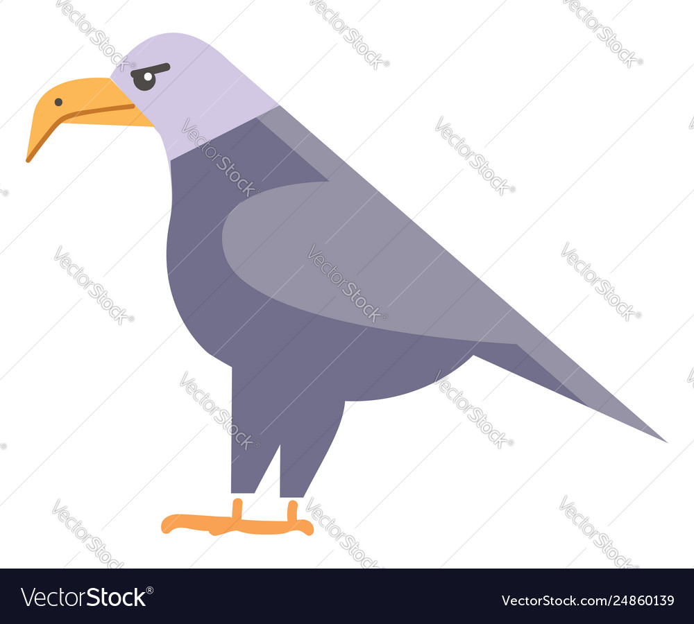 Flying Clipart Colorful - Bird Clip Art Png Transparent Png (#893608) -  PinClipart