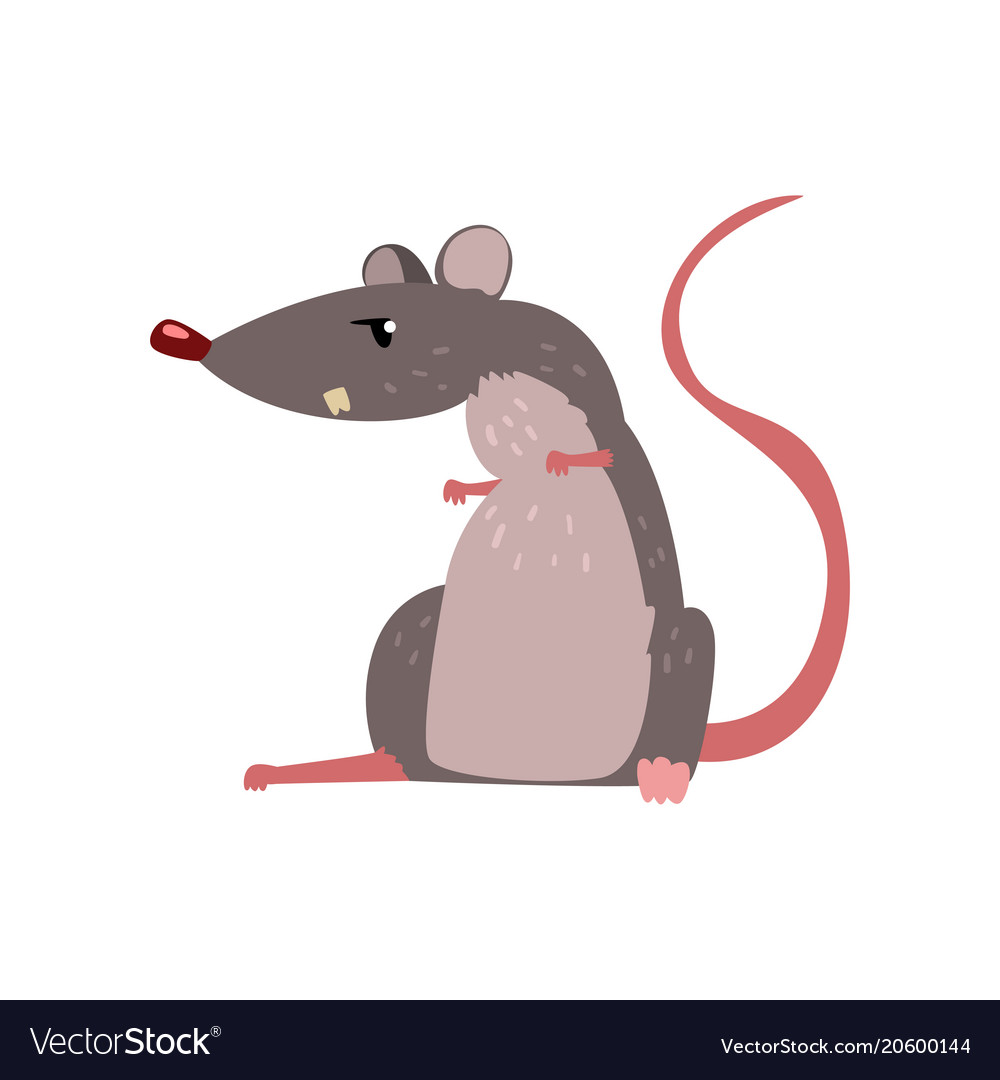 Angry grey mouse cute rodent character vector image