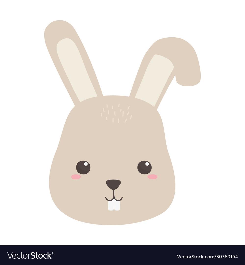 Cute little rabbit face animal cartoon isolated