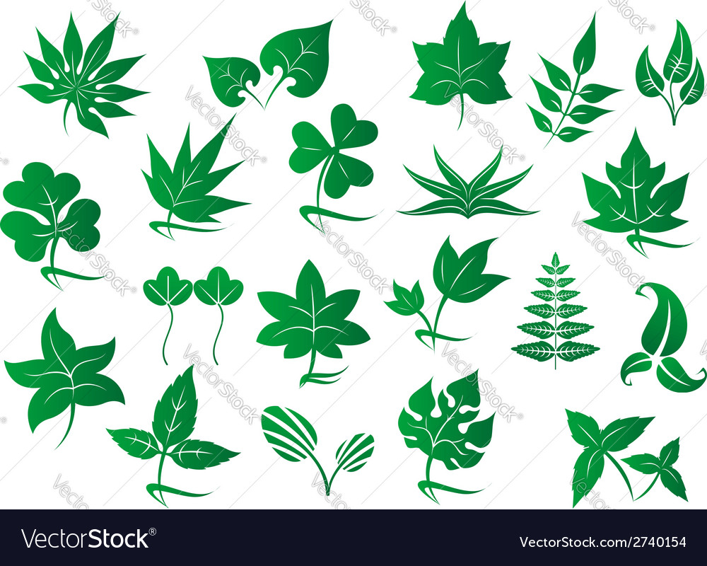 Green leaves and plants set