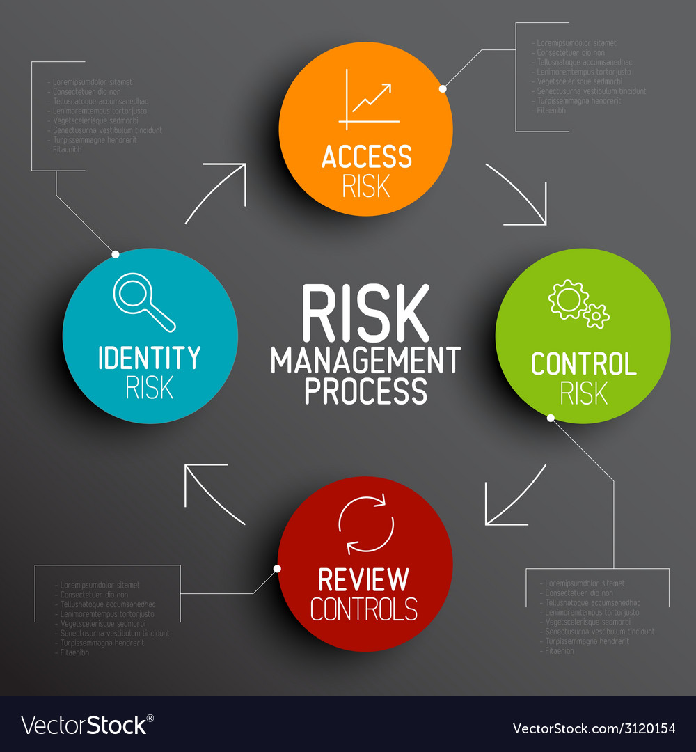 Risk management process diagram schema vector image