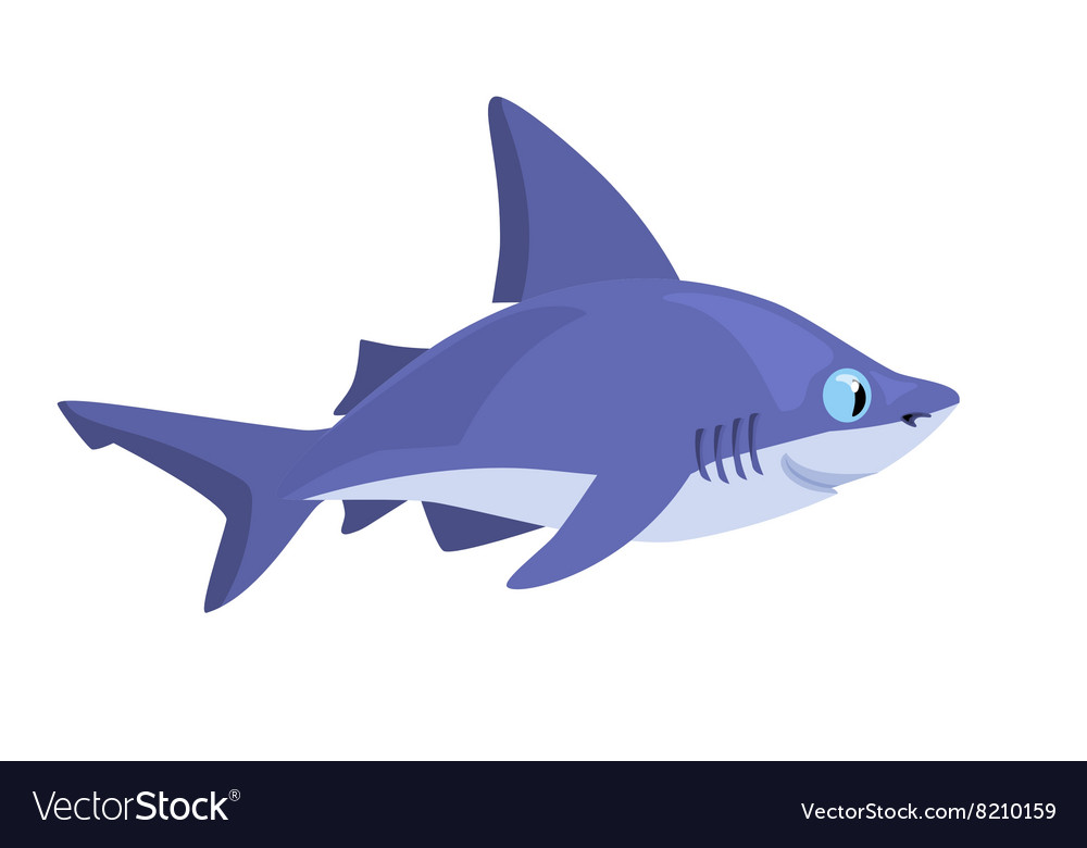 Smiling cartoon shark on a white background