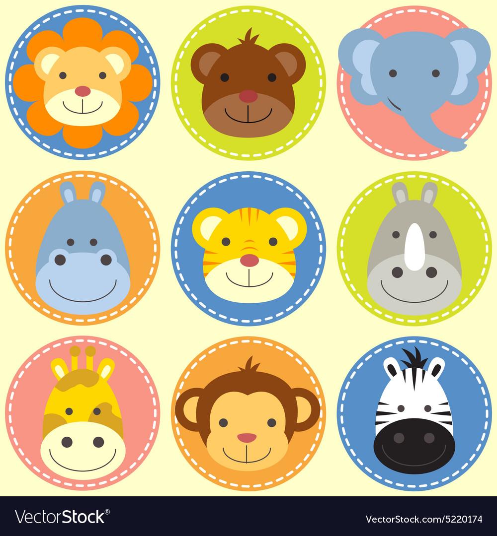 Animals face