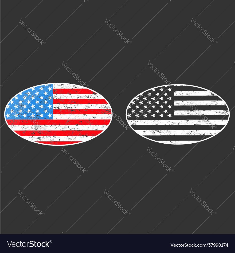 Oval frame vintage american flag badge patch