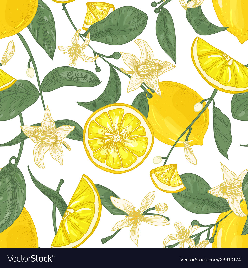 Seamless pattern with fresh juicy lemons whole