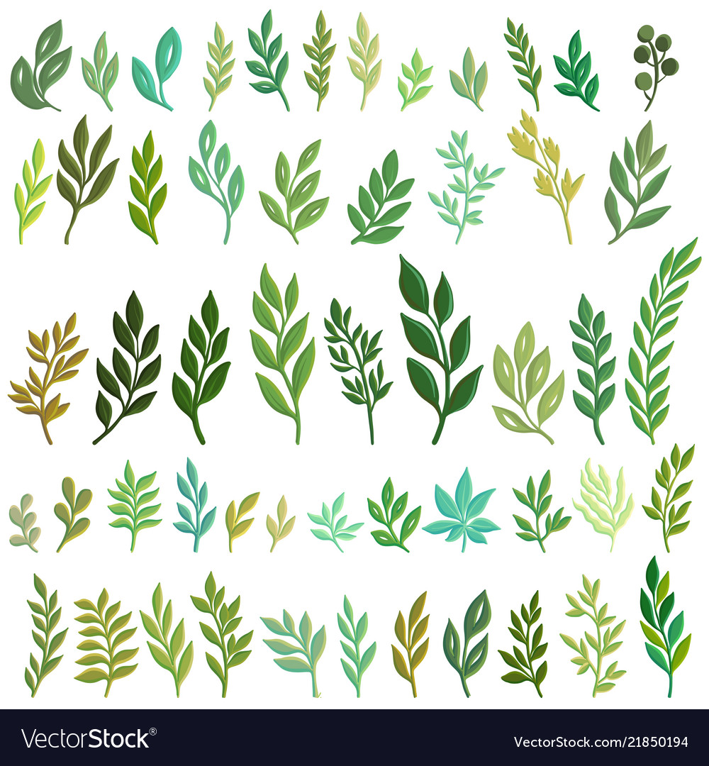 Drawing green leaves