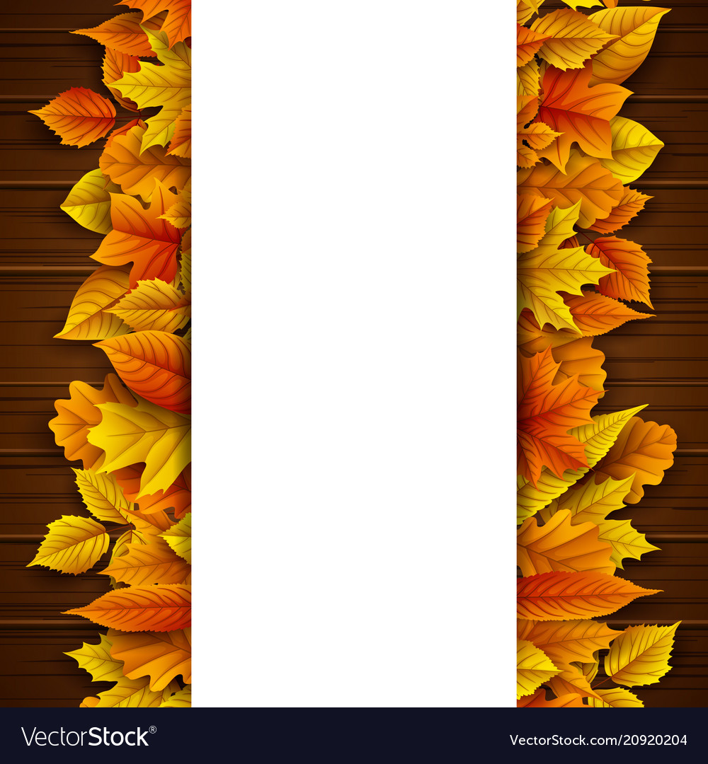 Autumn leaves with blank banner