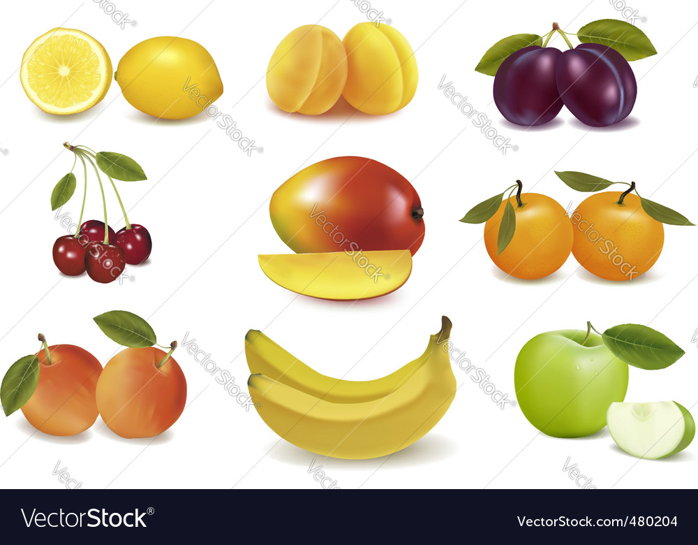 Group with fruits vector image
