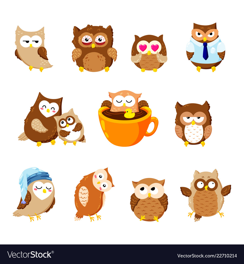 Collection Cute Owls Cartoon Characters Royalty Free Vector