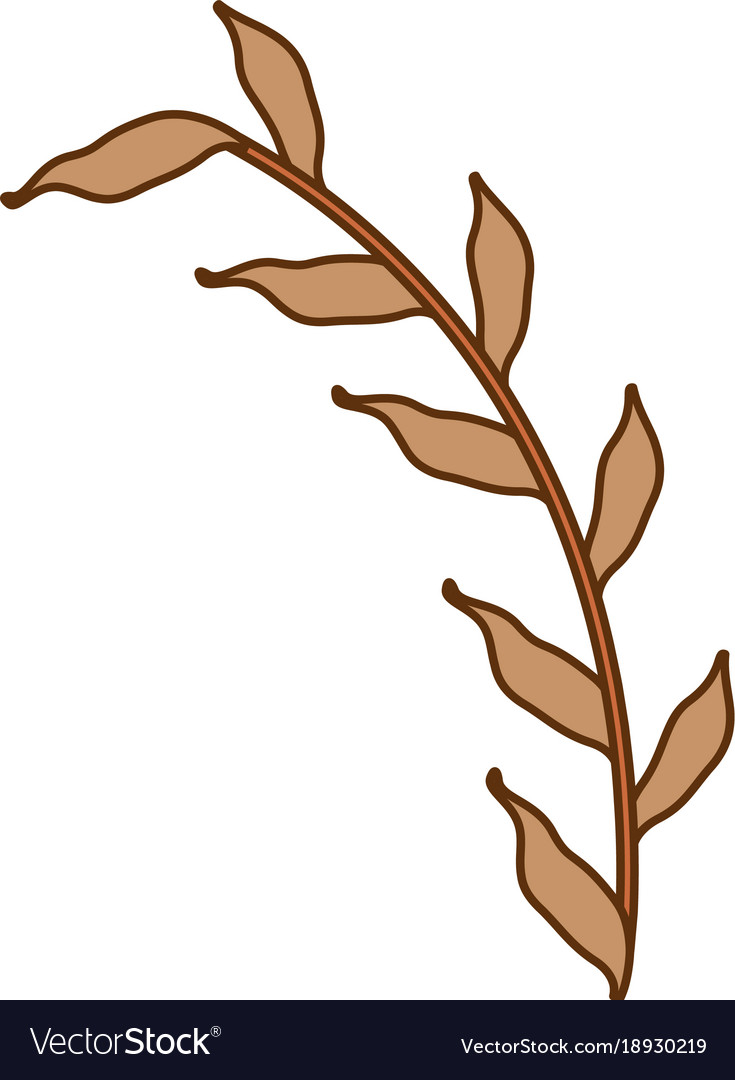olive branch isolated icon royalty free vector image rh vectorstock com branch victorian branch vector png