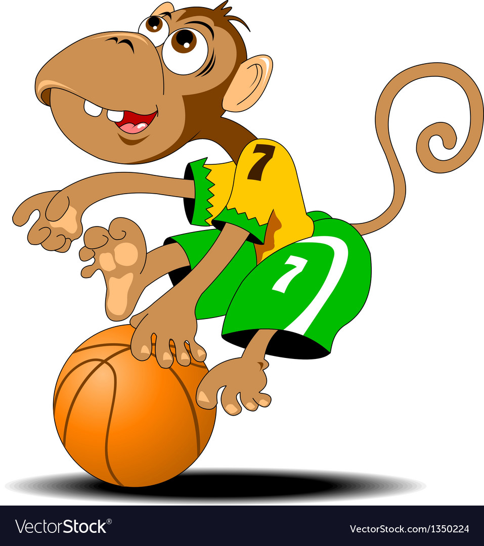 Monkey playing basketball vector image
