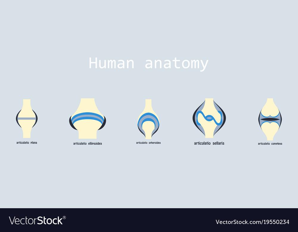 articulatia plana aparatul ricta în tratamentul artrozei