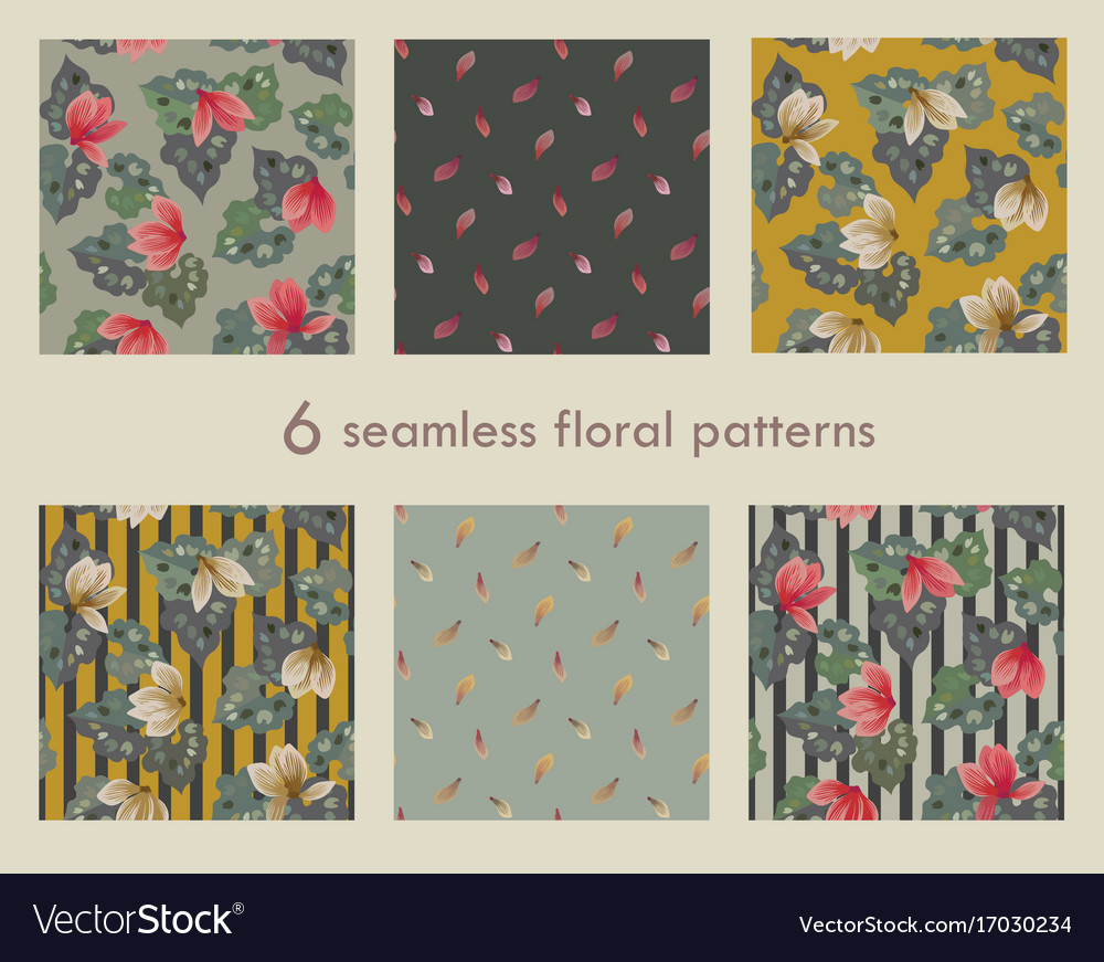 Set of 6 seamless floral pattern