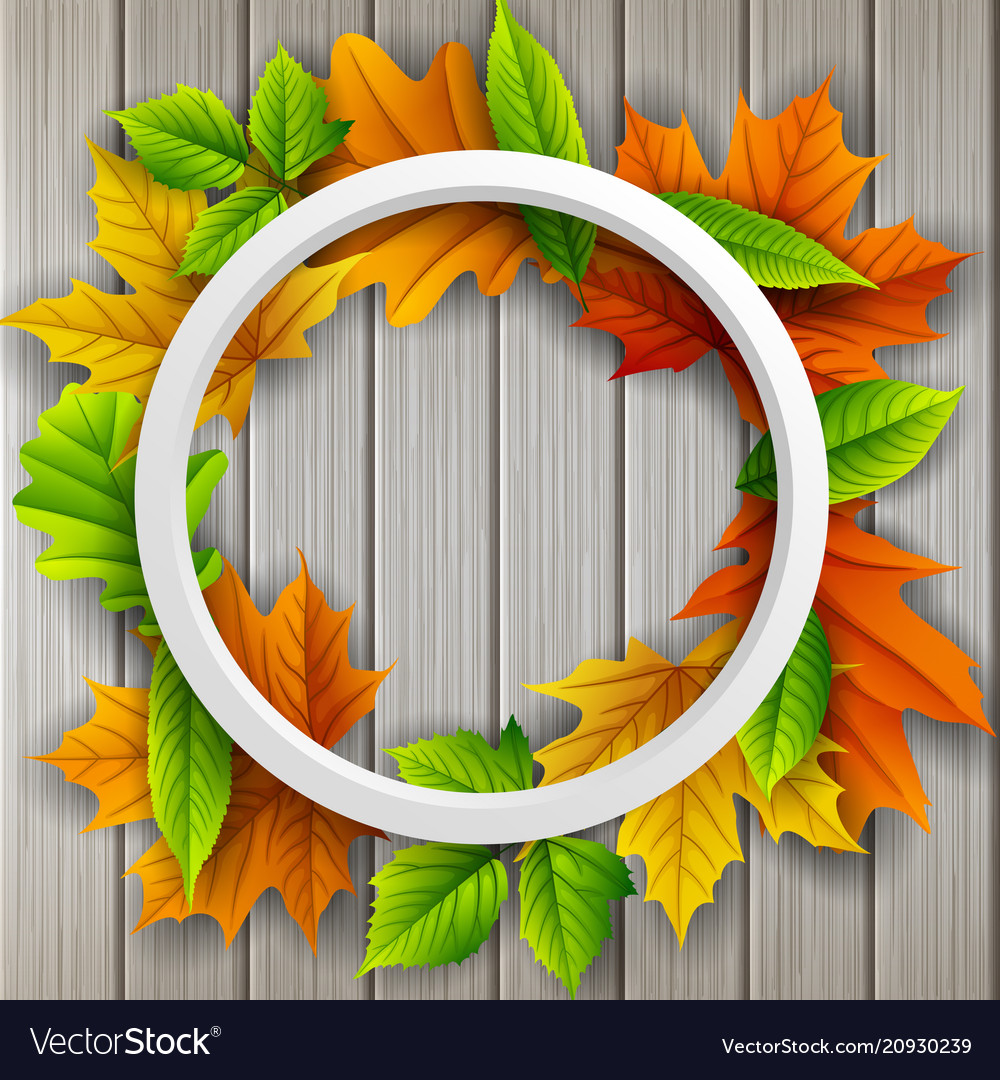 Round frame autumn leaves wood background