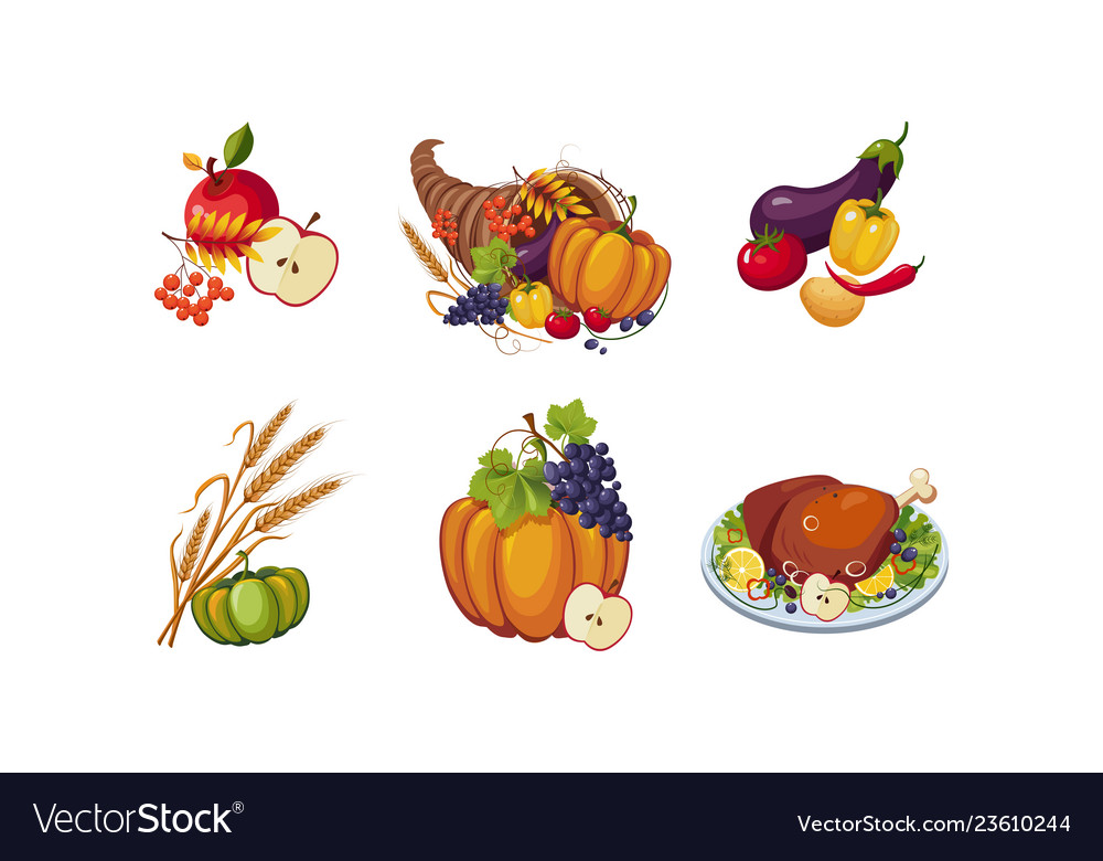 Autumn symbols collection thanksgiving day