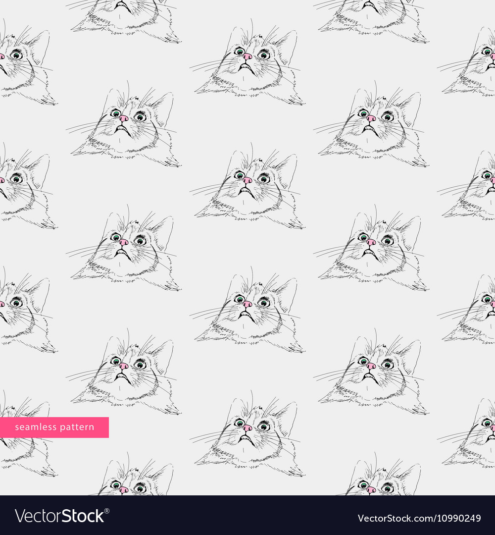 Seamless pattern surprised cute cats