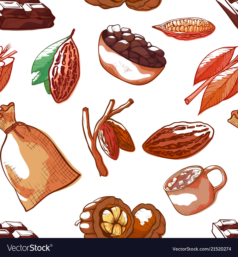 Cocoa beans hand drawn seamless pattern