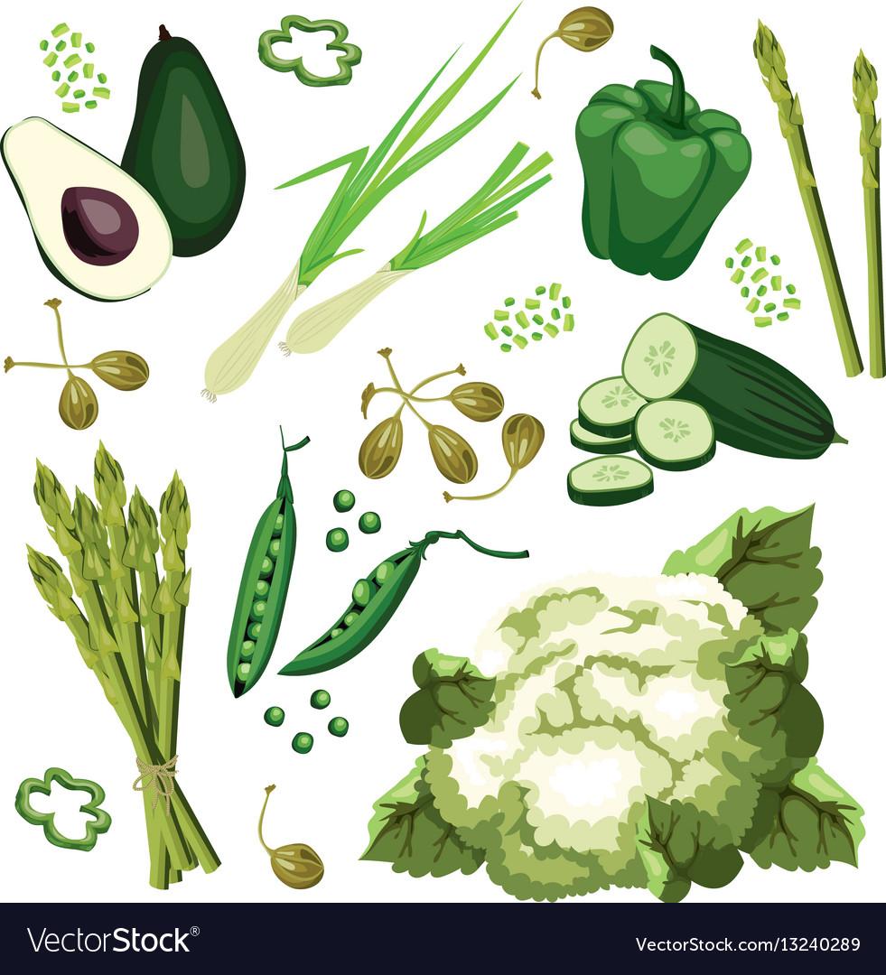 Set of ripe green vegetables