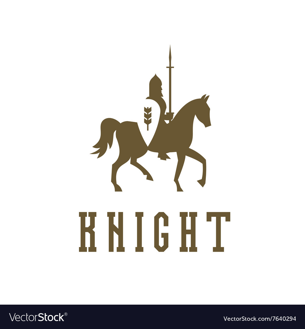 Knight on horseback with a chain mail armor vector image
