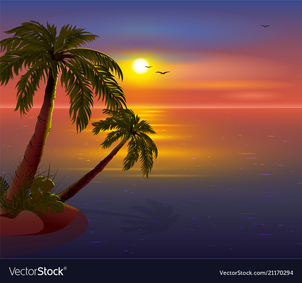 Palm Tree Island: Romantic Sunset On Tropical Island Palm Trees Vector Image