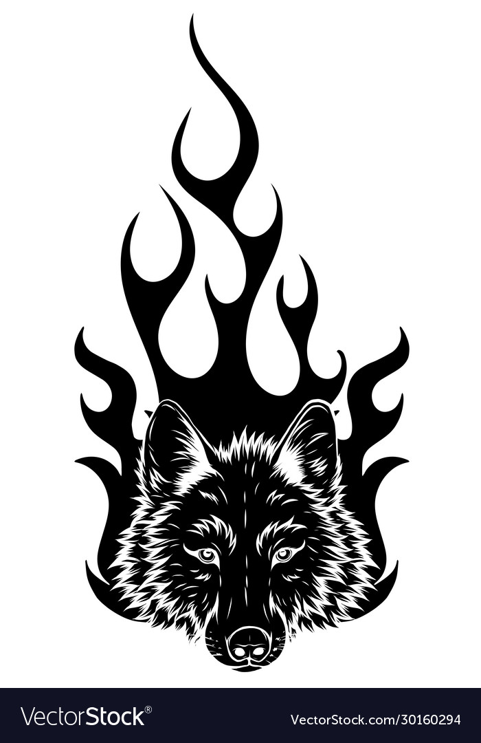 Wolf on fire for tattoo design