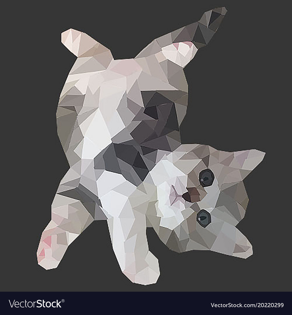 Poly cat vector image