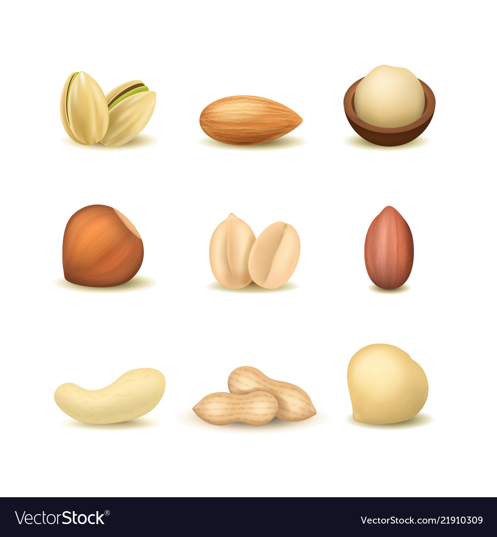 Realistic detailed 3d different types nuts set