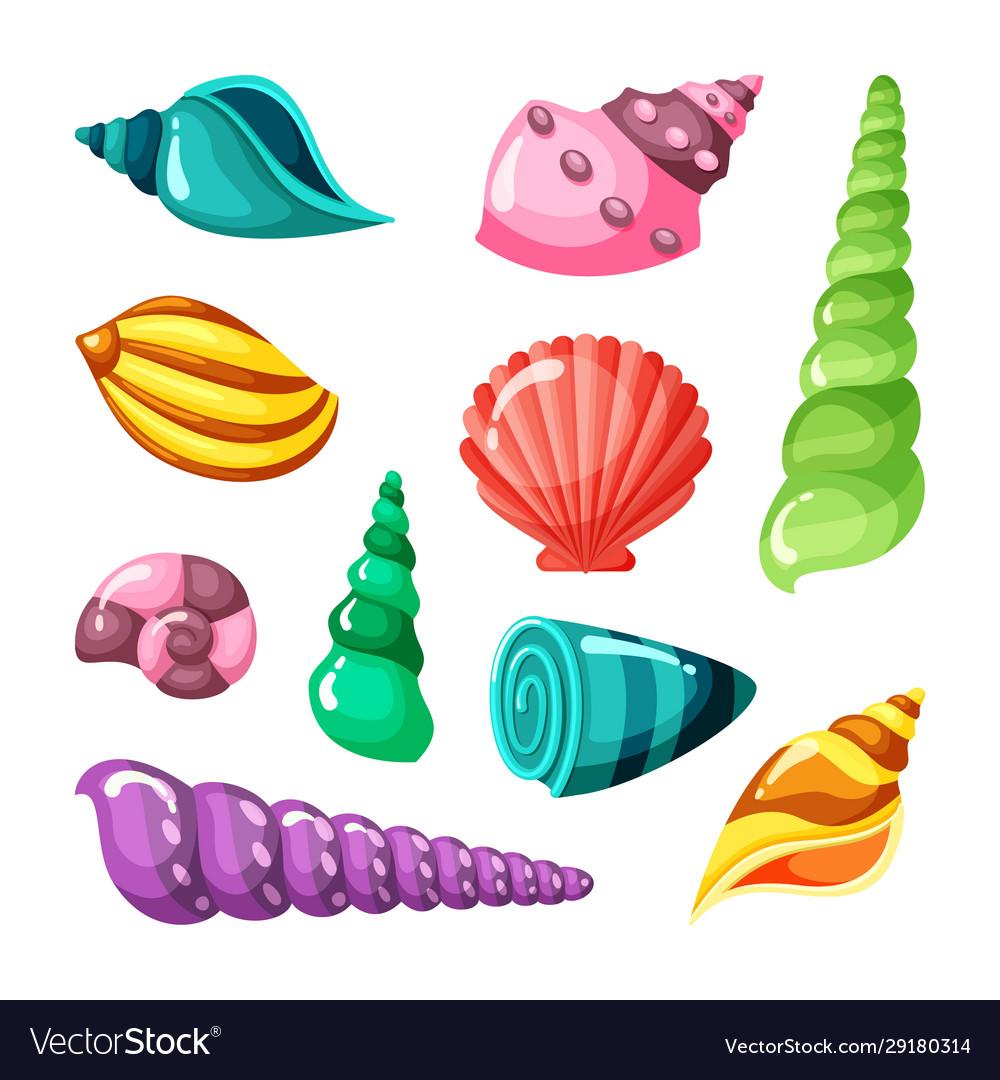 Seashell marine summer sea or ocean objects