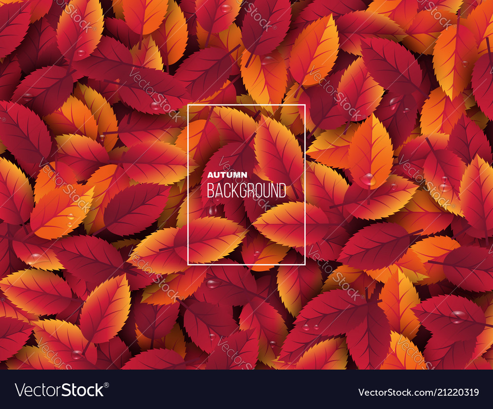 3d realistic autumn leaves with water drop