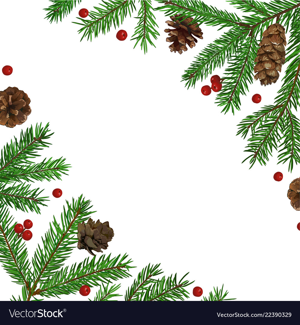 Background with realistic green fir tree branch