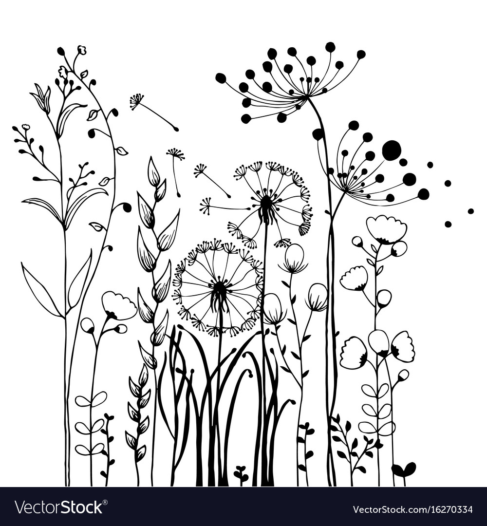Flowers and grass on white collection rustic