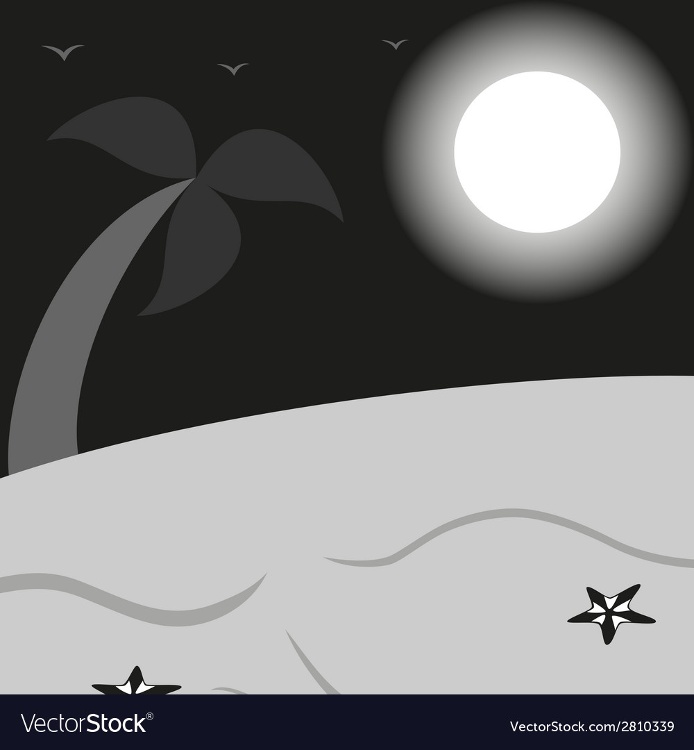 Black and white landscape a beach with palm vector image