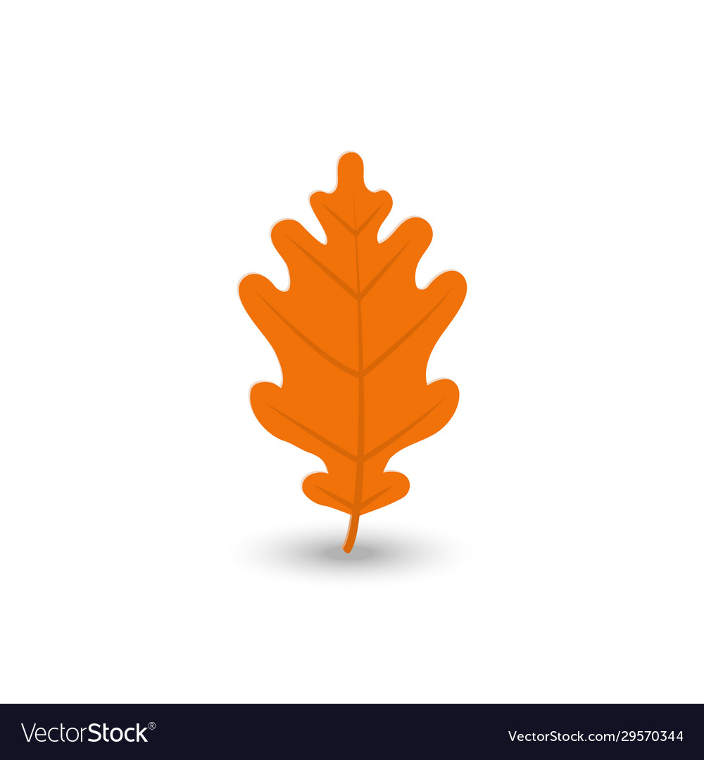 Colorful autumn leaf icon set