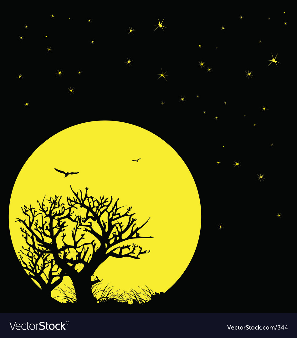 Night sky and moon vector image